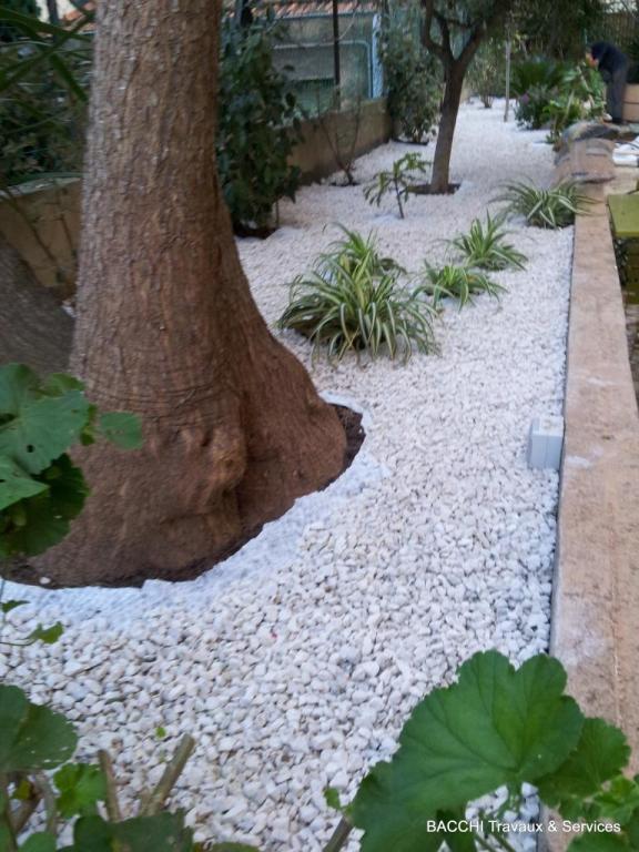 Plantation de nouvelles plantes